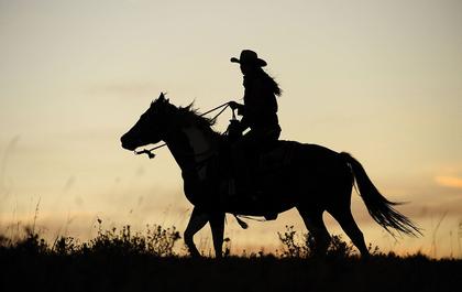 梦见骑马的心理学解梦:梦见骑马的解梦