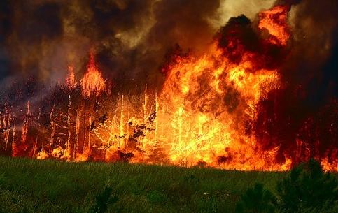 梦见火灾的心理学解梦:梦见火灾1